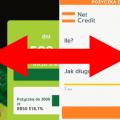 Vivus czy NetCredit? – dwie szybkie chwilówki z natychmiastowym przelewem